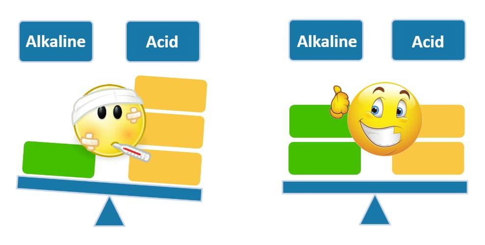 Acid-Alkaline Balance