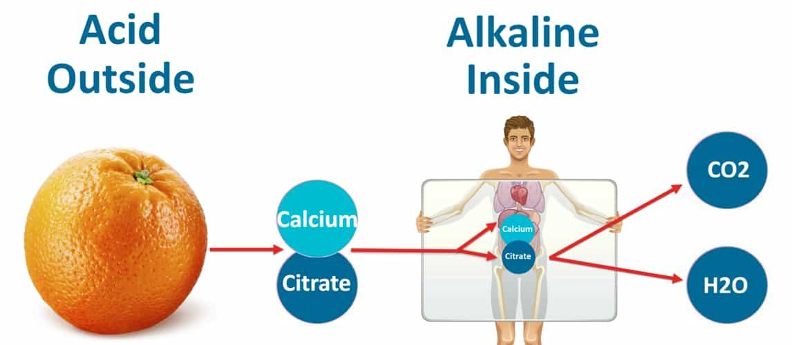 Acid Outside-Alkaline Inside