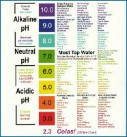Alkaline Foods-1