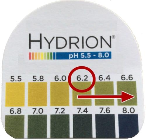 Undesirable post-challenge urine pH