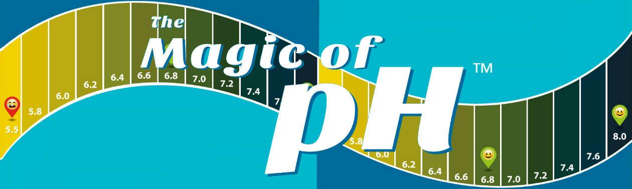 pH banner-8