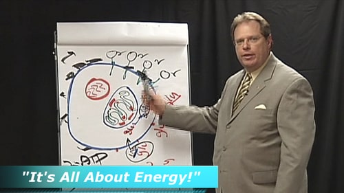 Energy cell-28kb