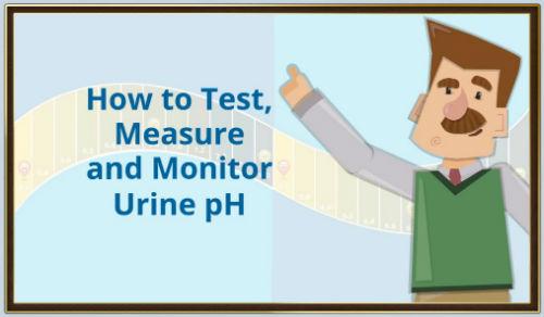 MpH urine test thumbnail2